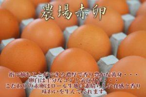 ベルジュールで使っている濃厚卵